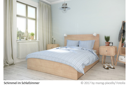 schimmel im schlafzimmer. Black Bedroom Furniture Sets. Home Design Ideas